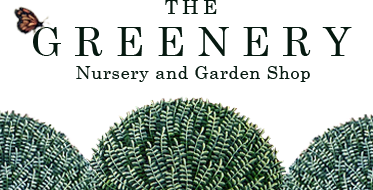 The Greenery Nursery & Garden Shop